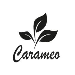Partner Carameo